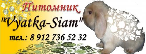 http://krolik-karlik.okis.ru/img/krolik-karlik/banner.png